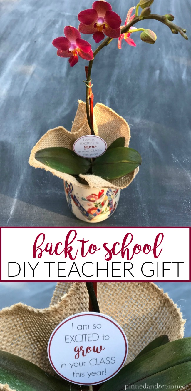 DIY Teacher Gift for Back to School